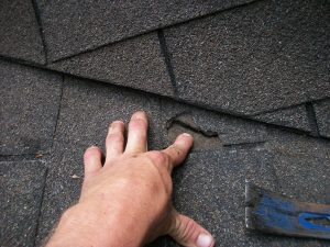 Handling All of Your Roofing Needs